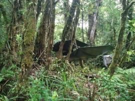Camp on Kolombangara Island
