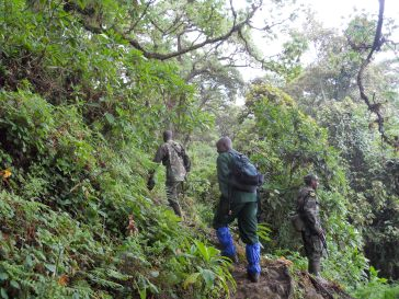 Accompanied by armed guard escorts in Volcanoes National Park